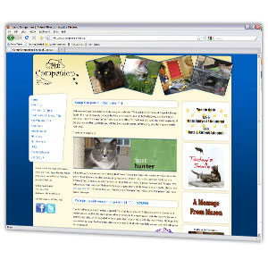 Updated and professional website design for an animal rescue organization based in Rochester.