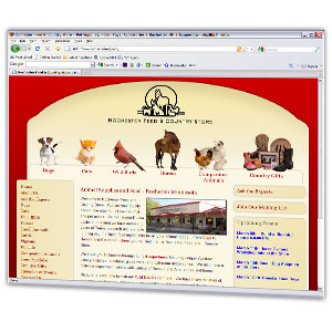 Custom website design built with wordpress for ease of updating by the Rochester Feed.